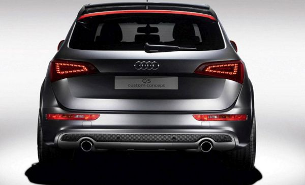 2015 - Audi SQ5 Rear View