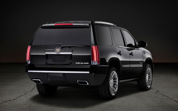 Rear View of 2016 - Cadillac Escalade
